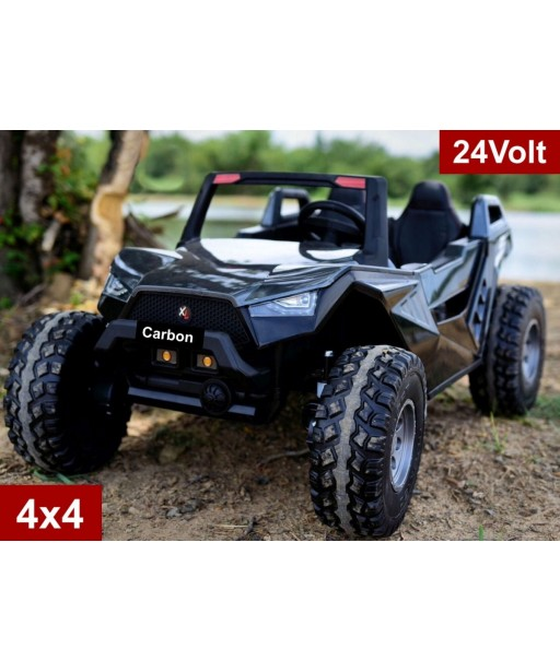 24Volt Carbon Buggy with 2.4G R/C